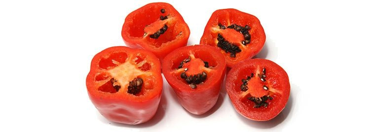 The Manzano pepper is one of the most fascinating hot chili peppers